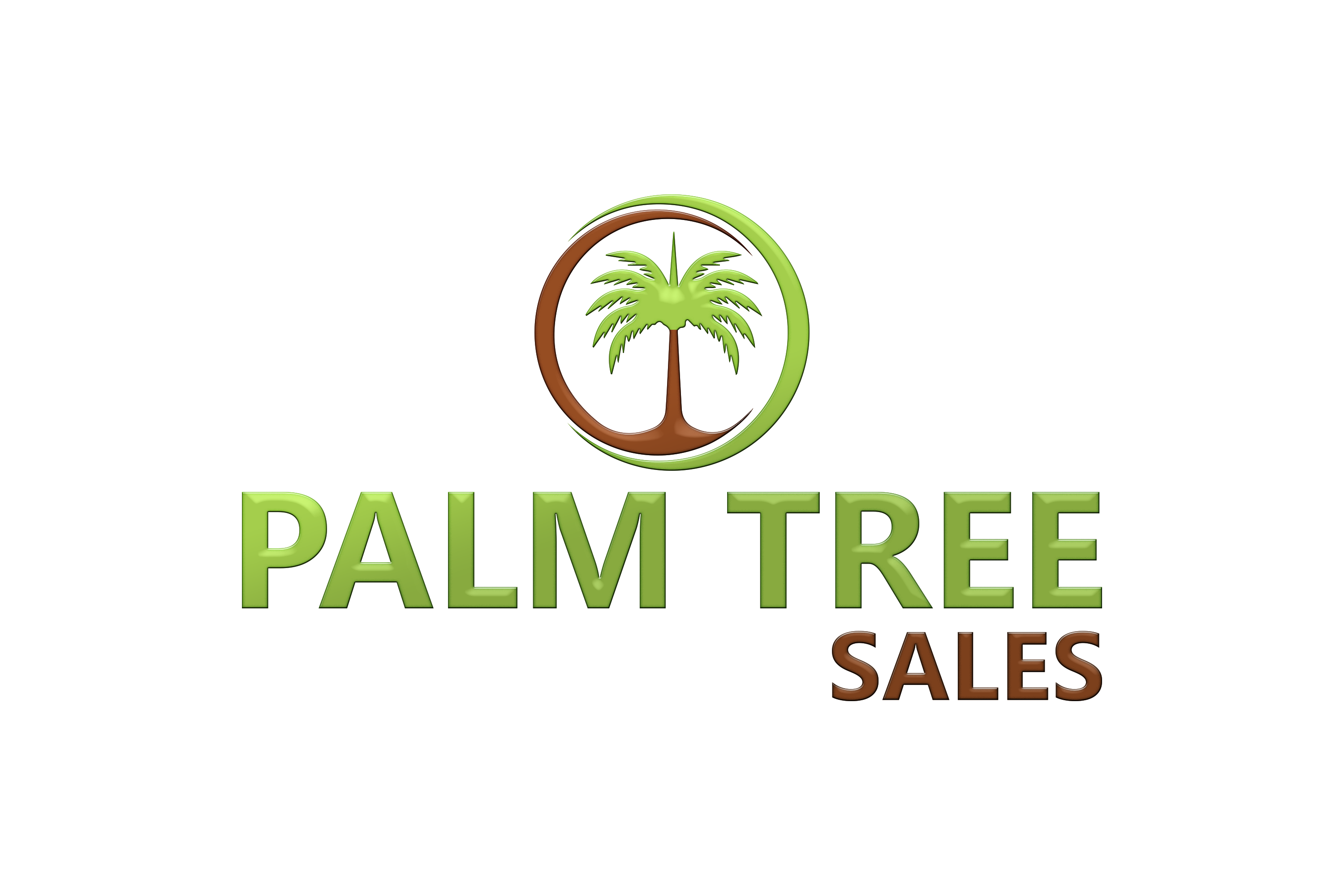 Palm Tree Sales Logo 2020